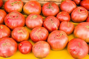 Pink heirloom tomatoes