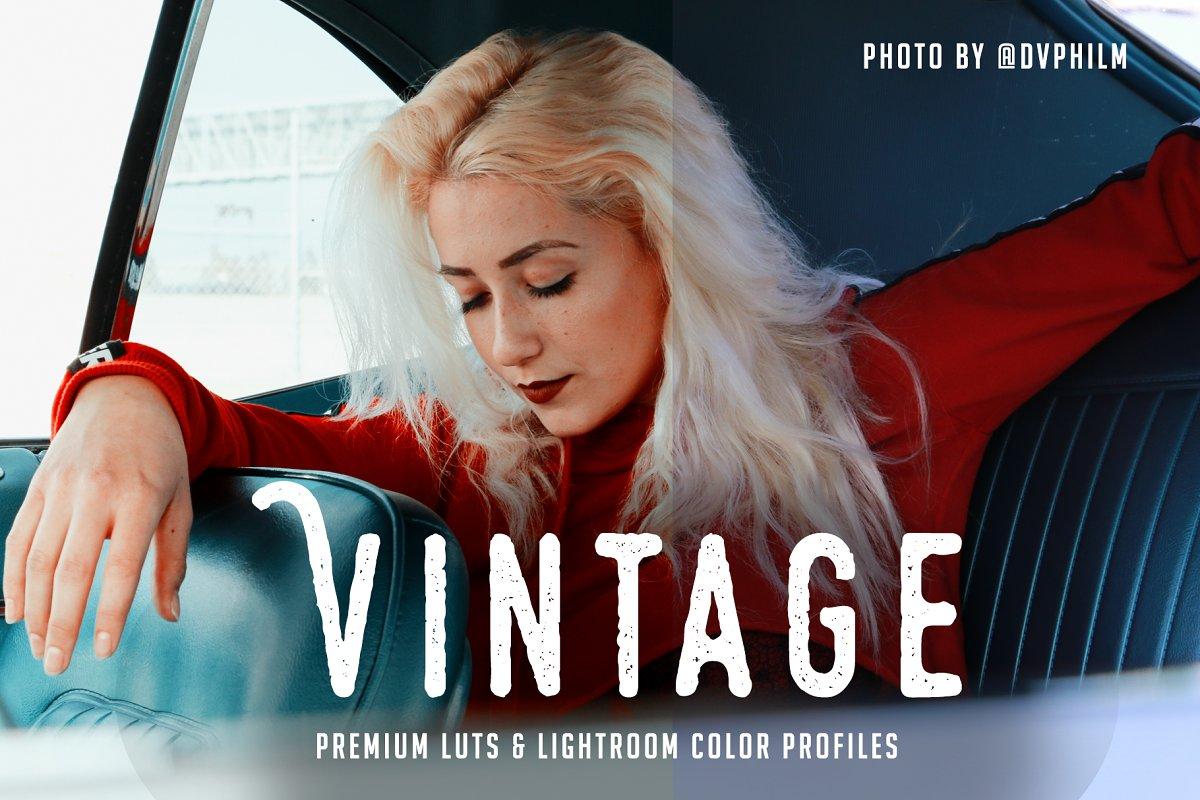 Vintage Premium LUT 24 Pack