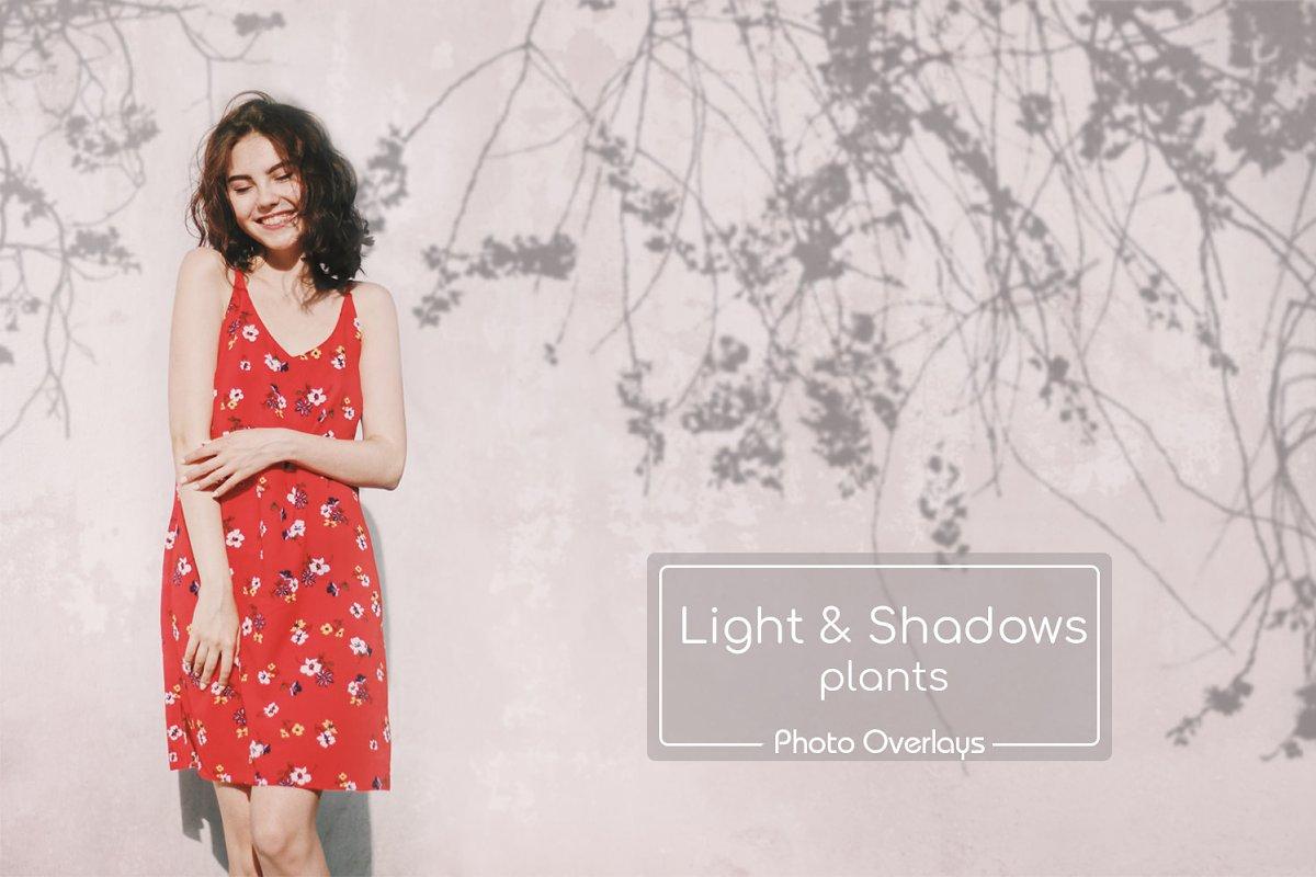 40 Plant Shadows Overlays