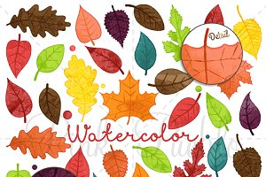 Watercolor Leaves Clipart & Vectors