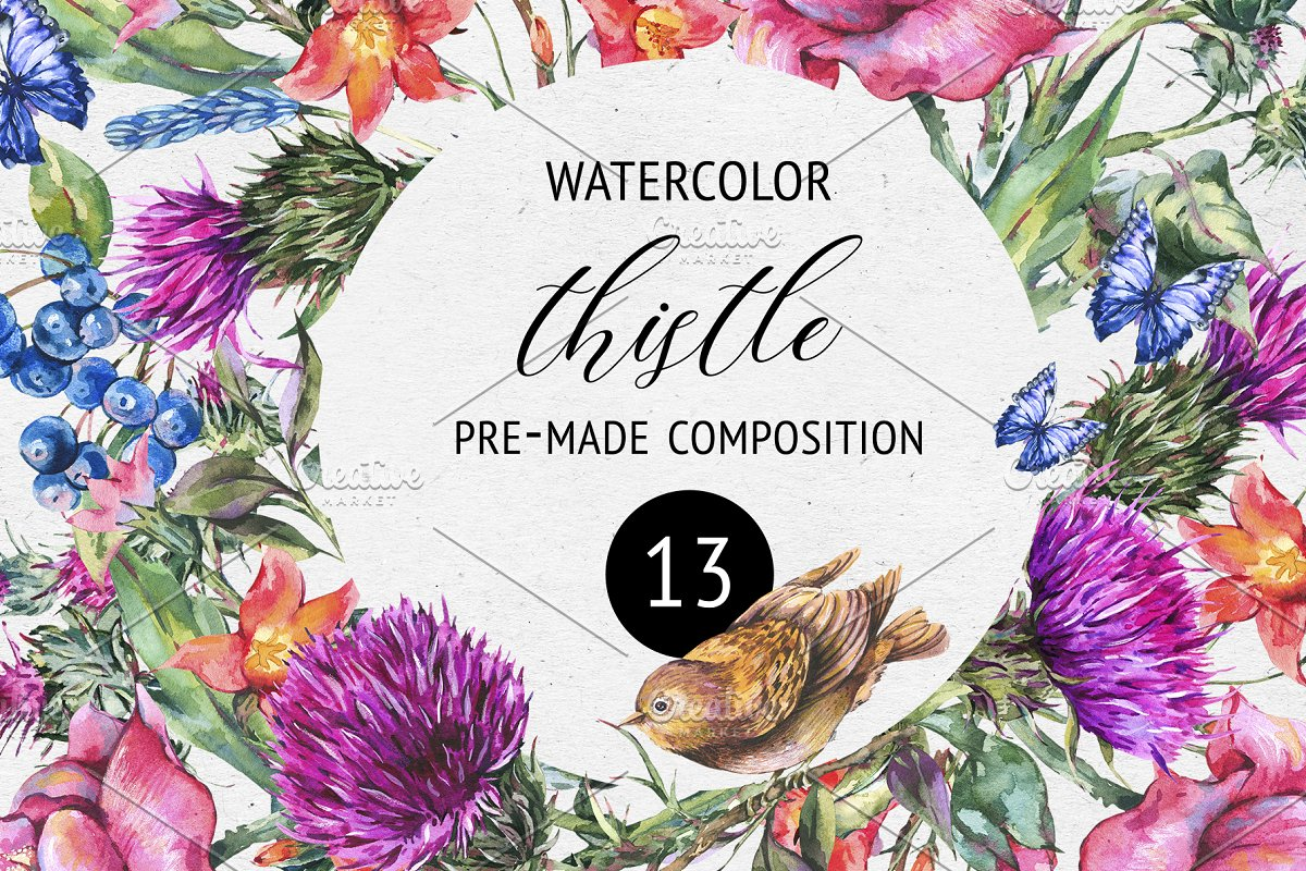 3160e99ec Watercolor Thistle Frame and Cards ~ Illustrations ~ Creative Market