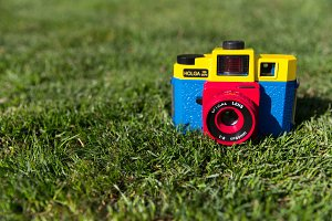 Cute Camera on Grass Background