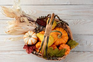Autumn Basket Still Life