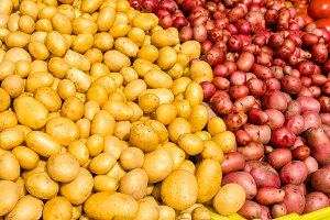 Display of new crop potatoes