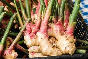 Fresh ginger root at market