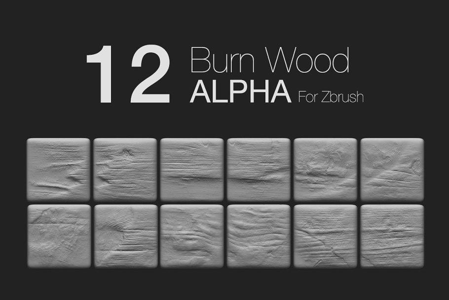 Zbrush - 12 BurnWood Alpha ~ Wood Textures ~ Creative Market