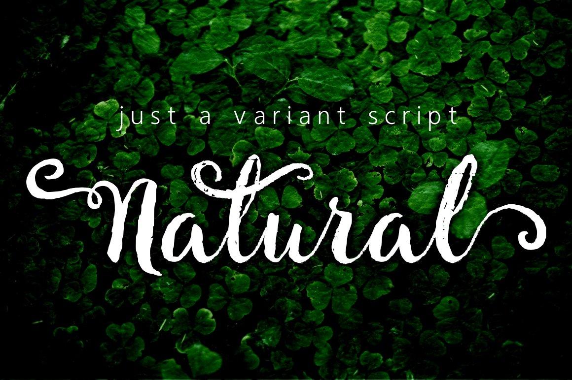 Natural script fonts creative market
