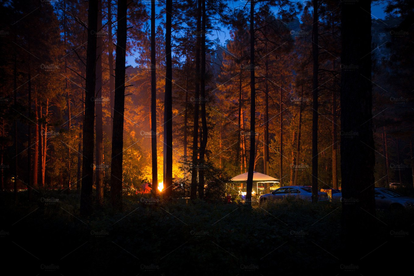 campfire light in the forest night nature photos creative market