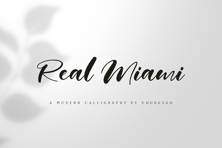 Real Miami Script ~ Script Fonts ~ Creative Market