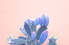 Blue neon cactus. Minimal Fashion ar by  in Beauty & Fashion