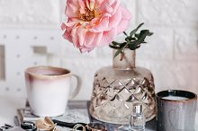 Pink rose in a vase by  in Beauty & Fashion
