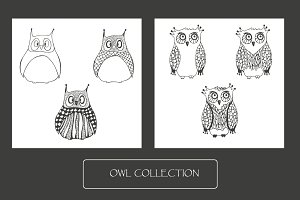 Owls collection + 1 seamless pattern