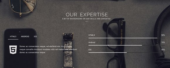 Reign Pro - Corporate Agency in Bootstrap Themes - product preview 3