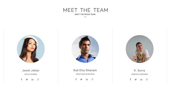 Reign Pro - Corporate Agency in Bootstrap Themes - product preview 5