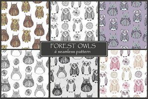 Forest owls. Seamless patterns.