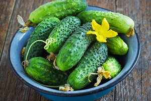 Cucumbers in a metal bowl