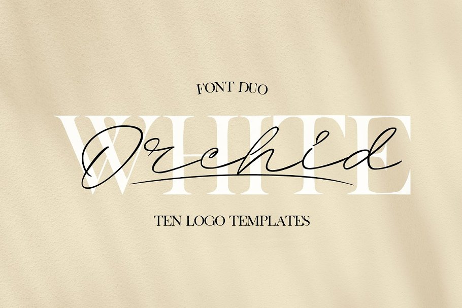 White Orchid | Font Duo + Logos ~ Script Fonts ~ Creative Market