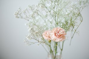 Carnation + Baby's Breath