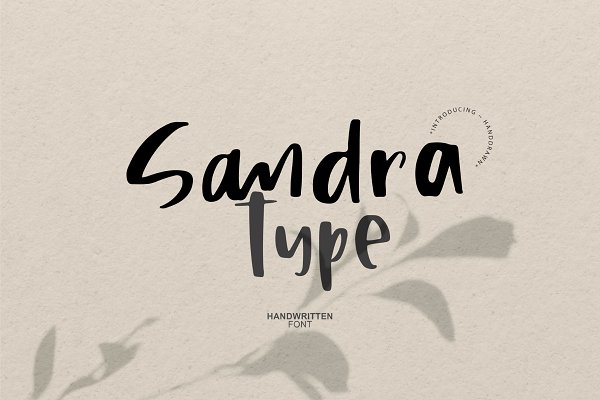 Sandra Type   Handwritten Font