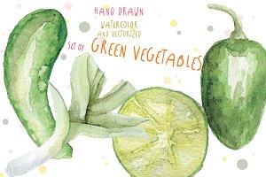 Watercolor green vegetables vector