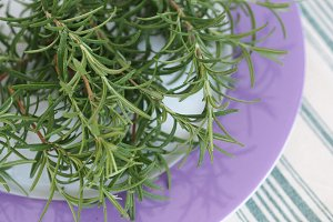 Rosemary on a kitchen plate