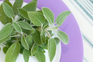 Sage for cooking