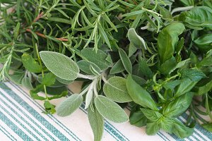 Four herbs