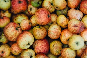 A photo of Apples