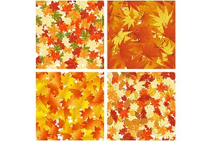 Seamless Autumn  Leaves Pattern Set