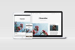 Clementine - WP Blog Theme