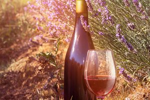 Bottle of wine against lavender