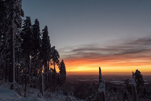 Winter Sunset over snowy Forest