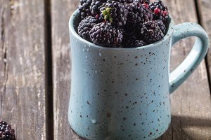 Mug of blueberries