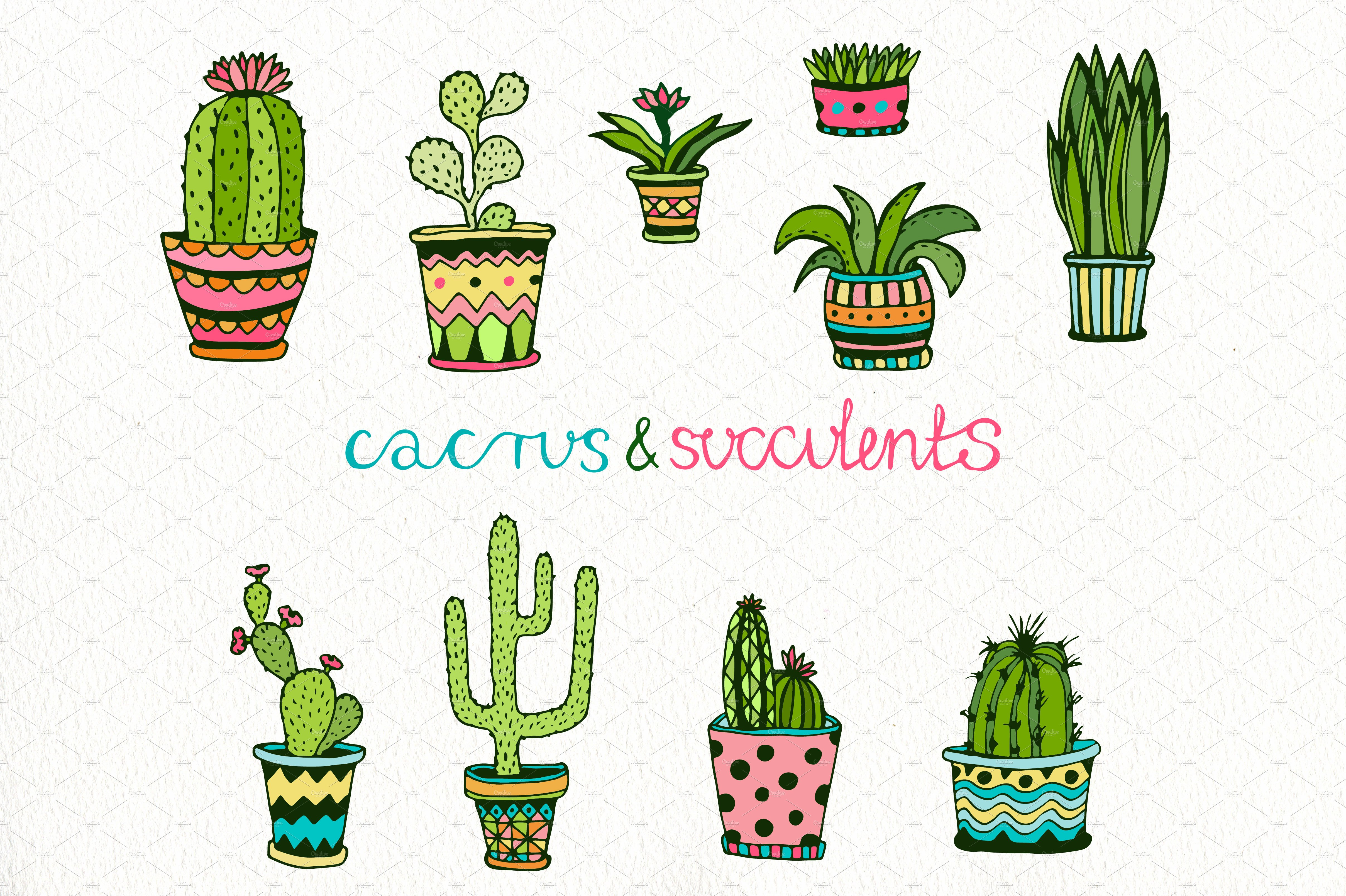 Doodle Cactus Vector Collection Custom Designed Illustrations