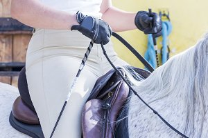 woman on a dressage session