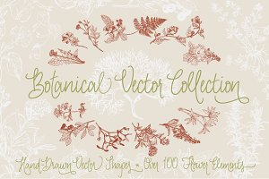 Botanical Vector Collection
