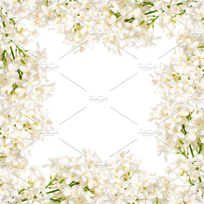 DSC_6255-Edit copy.jpg - Nature