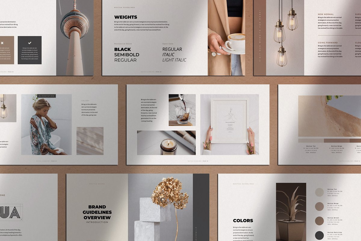 Noctua PowerPoint Brand Guidelines ~ PowerPoint Templates ~ Creative