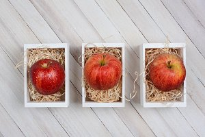 Gala Apples in Mini Crates