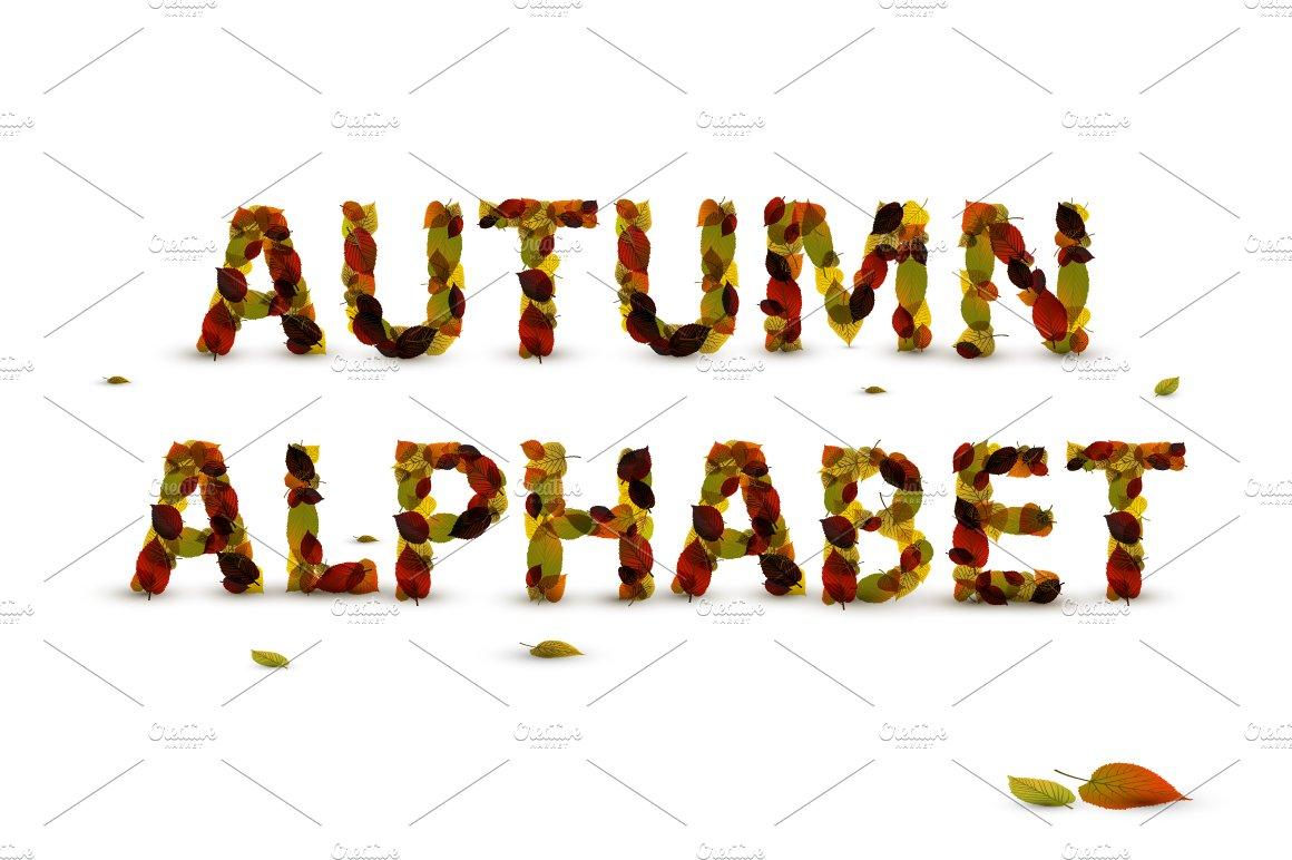 Autumn Leaf Alphabet Symbol Fonts Creative Market