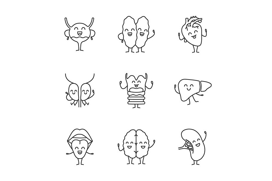Smiling human internal organs icons