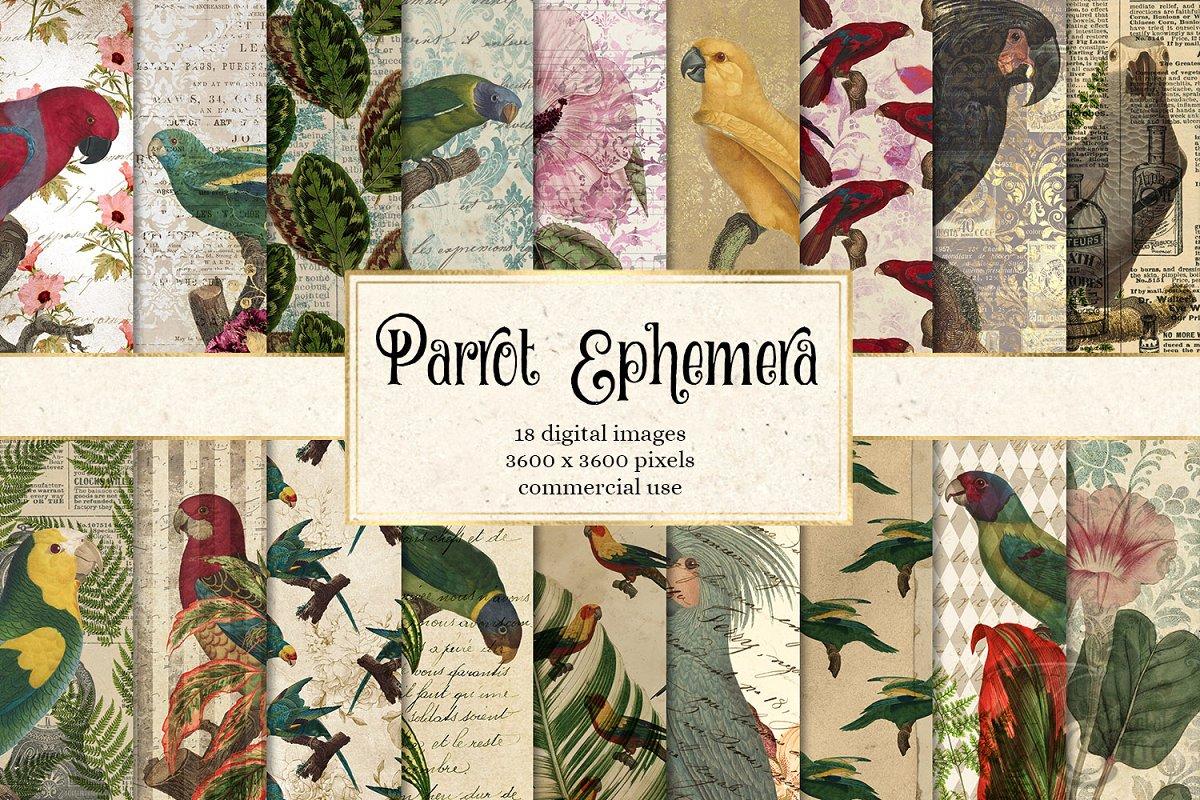 Parrot Ephemera Digital Paper