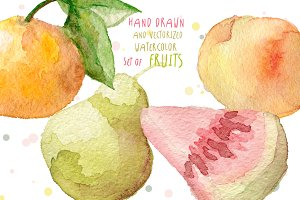 Watercolor fruits hand drawn vector