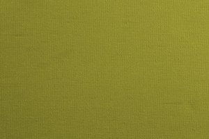 Olive green canvas background