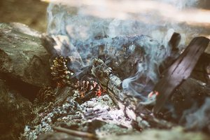 Campfire with pinecones.