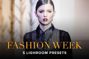 Fashion Week—LR5 Presets