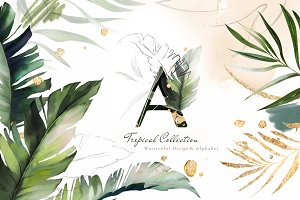 Tropical Watercolor & Gold Leaves