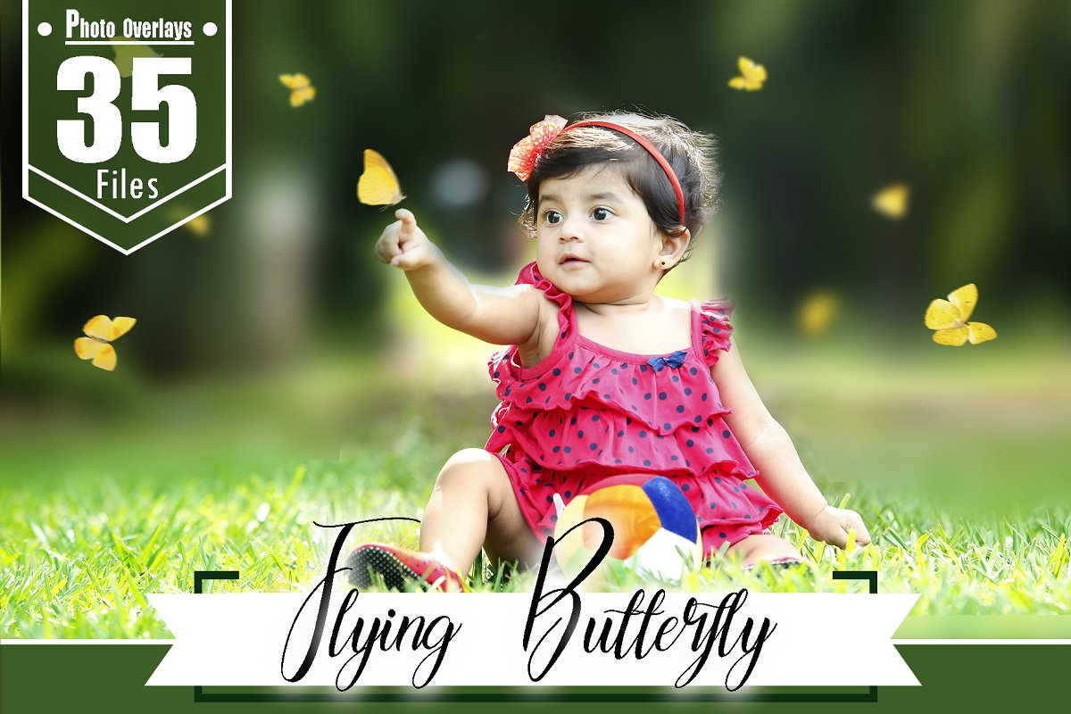 35 Butterfly Photoshop Overlays