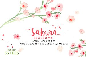 Sakura Blossoms - Watercolor Clipart