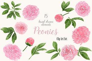 Pink Peonies Clip Art Set